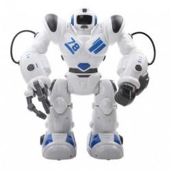 Robohoter RTR, programowanie ruchów